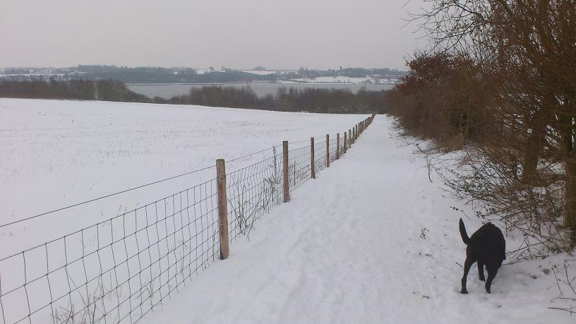 Path down to Brixworth Country Park from Brixworth.